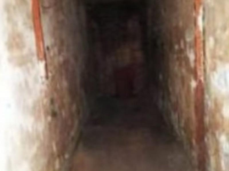 Hallan túneles en plancha del zócalo