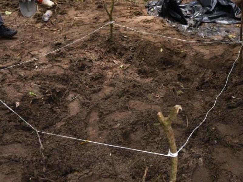 Hallazgo de fosas clandestinas, resultado del trabajo de la ciudadanía