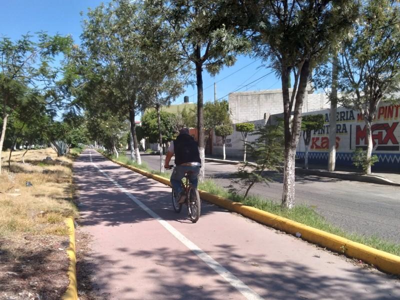 Hasta 2 hechos de tránsito a la semana involucran ciclistas