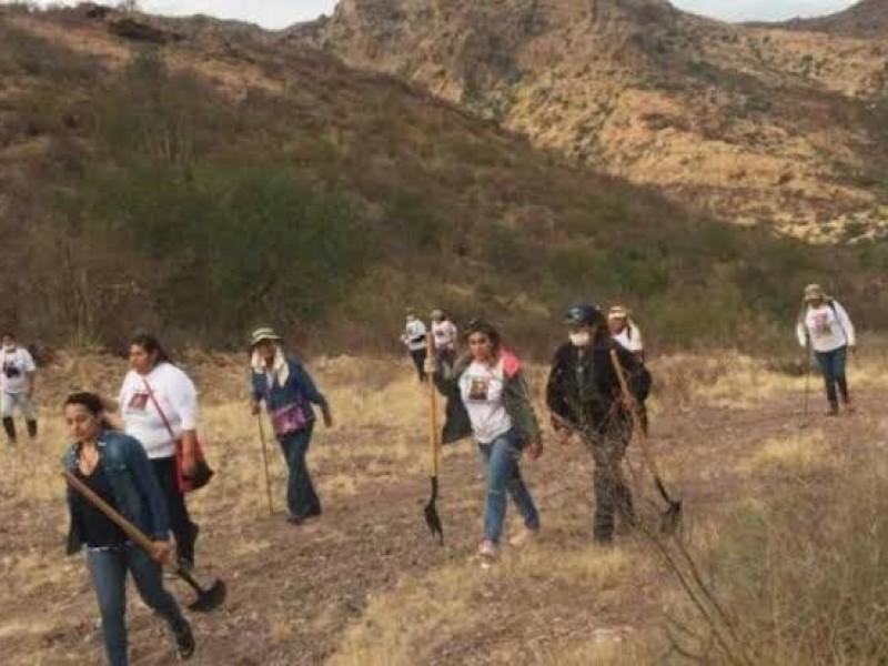Hasta 20 reportes diarios de desaparecidos reciben colectivos de búsqueda
