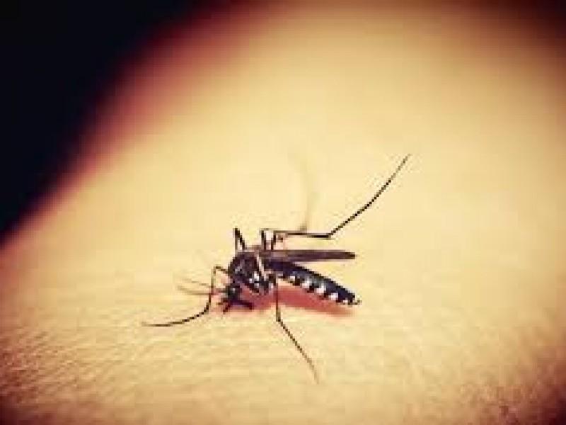 Hay 726 casos de Dengue en Puebla y un fallecido