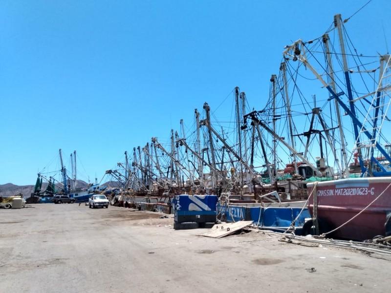 Basura marina afecta producción pesquera