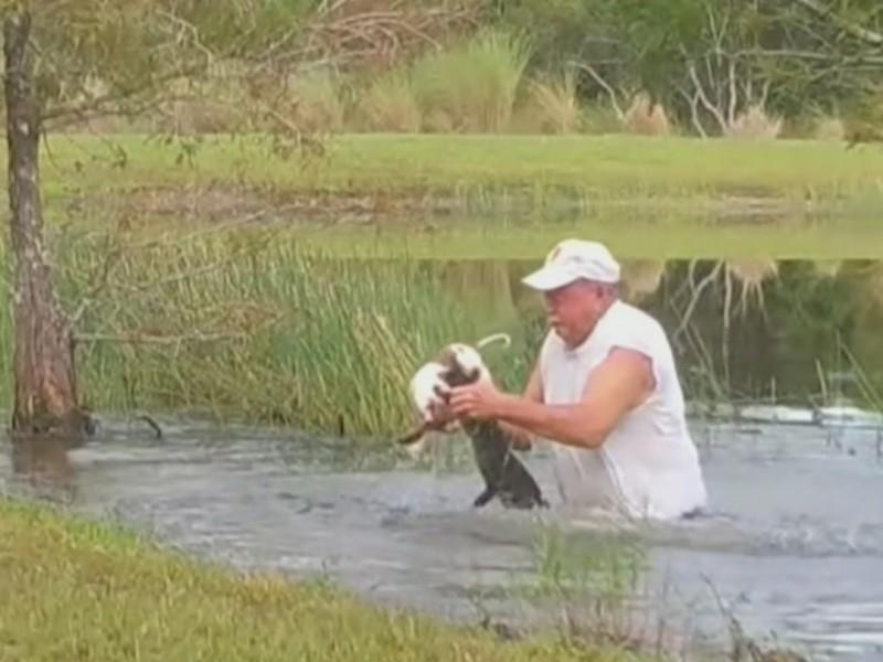 Hombre lucha contra cocodrilo para salvar a su perro