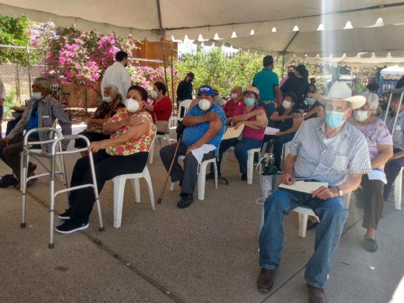 Hoy culmina la vacunación de adultos mayores en Guasave
