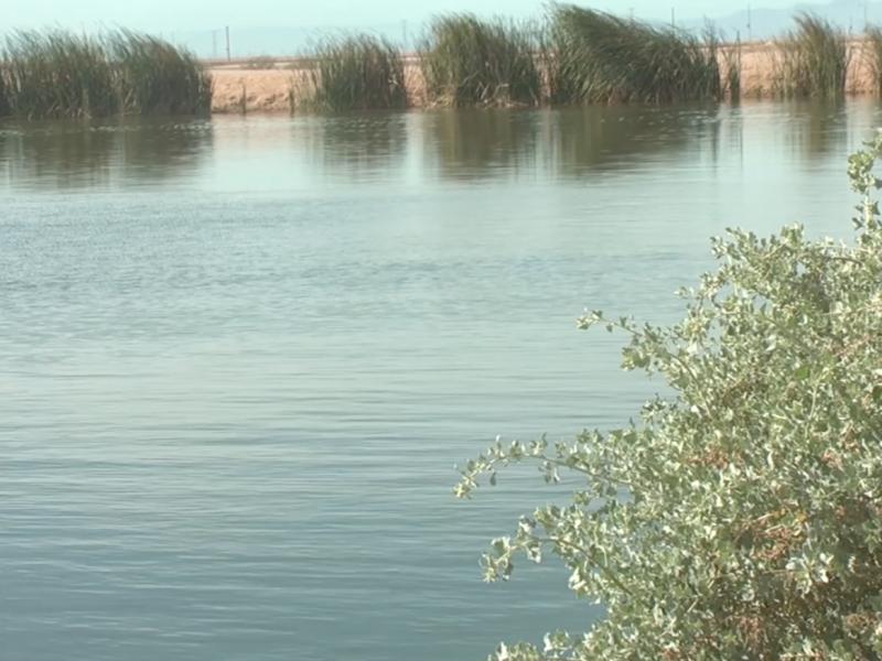 humedal CUCAPAH de SLRC, refuerza sobreexplotación de mantos acuíferos