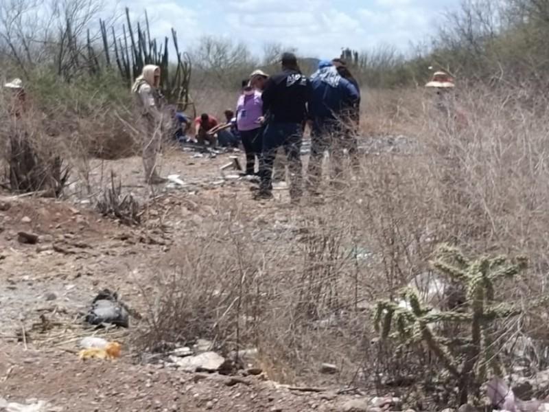 identifican 7 cuerpos de 39