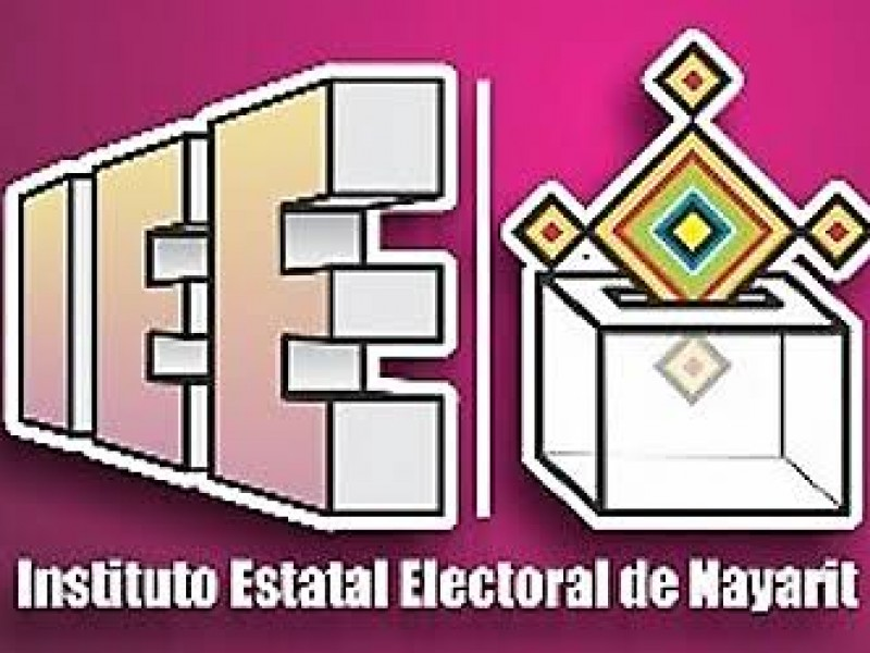 IEEN sancionará a ex  candidatos a regiones