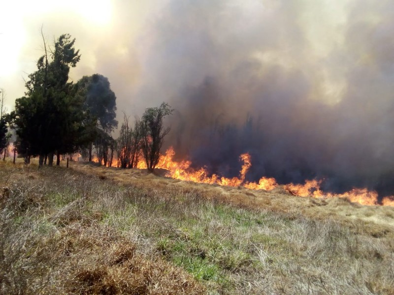 Imponente incendio en zona ecológica de Xochimilco