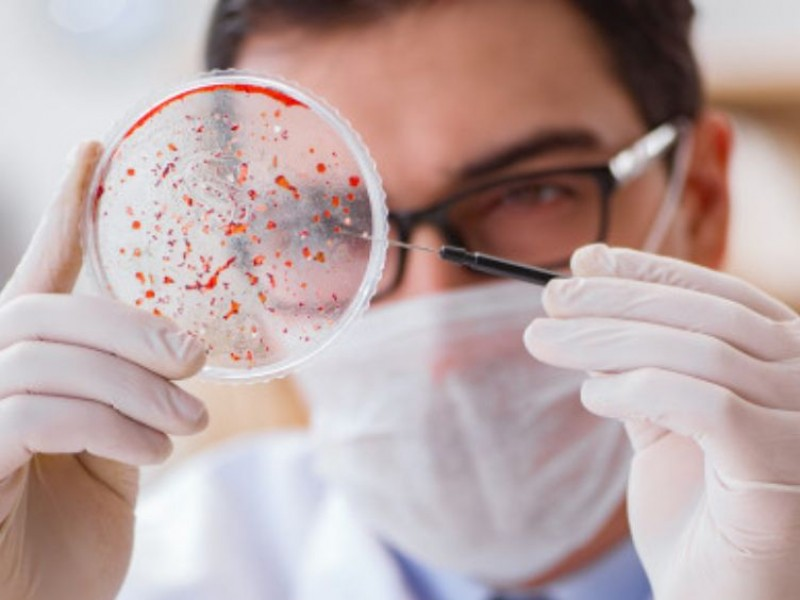 Improbable que SARS-COV-2 se originara en laboratorio, asegura OMS
