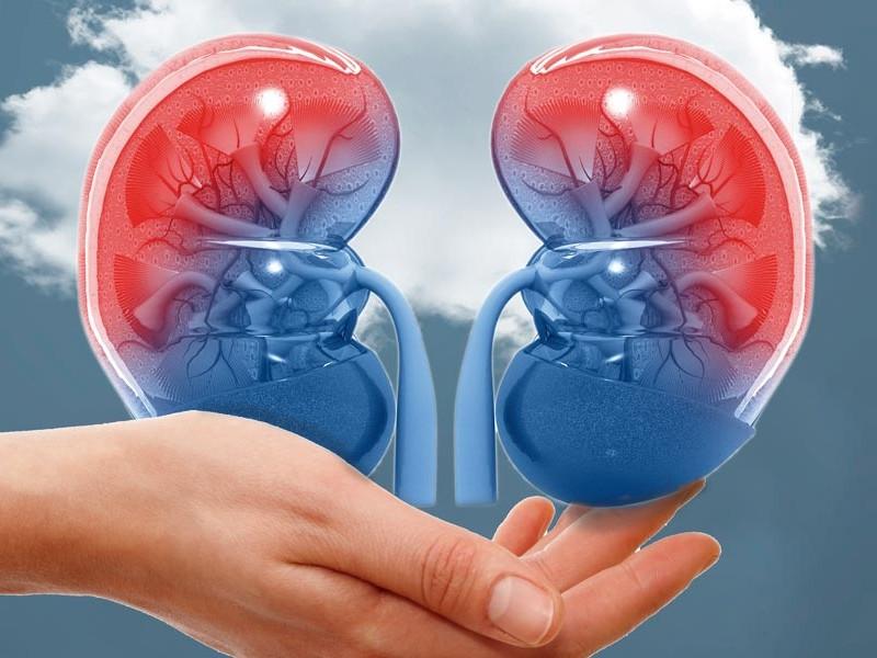 Impulsan cultura de donación de órganos en hospital de Zamora