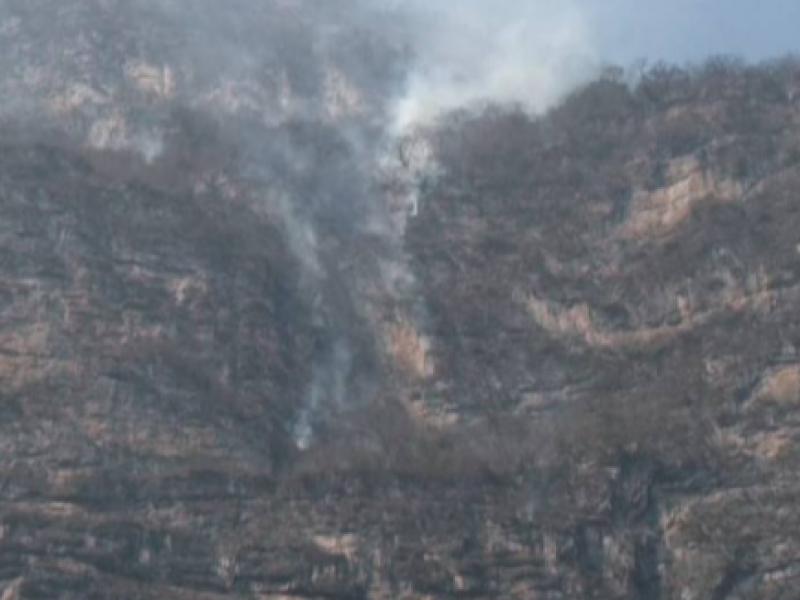 Incendio activo consume hectáreas en el Cañón del Sumidero