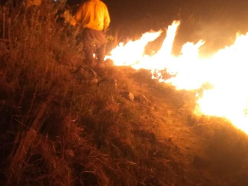 Incendio afecta 11.9 hectáreas en La Primavera