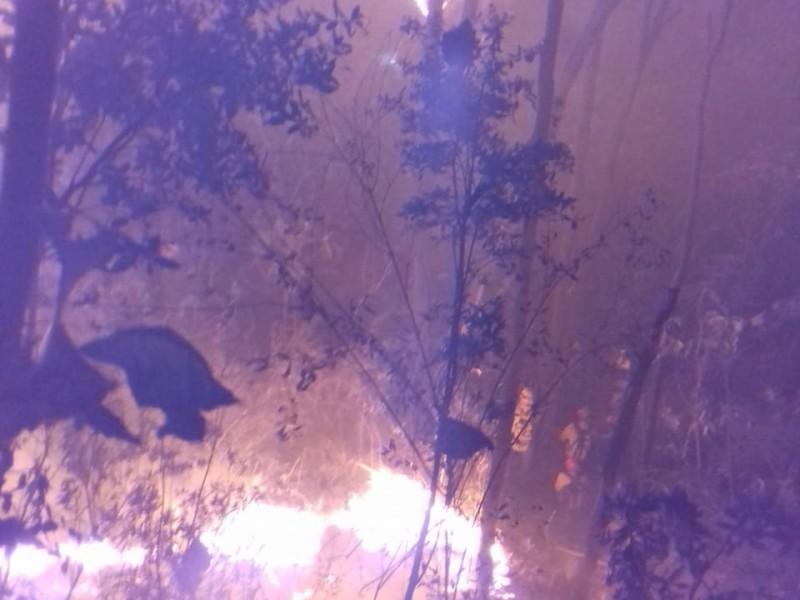 Incendio afecta a 16 hectáreas en La Primavera