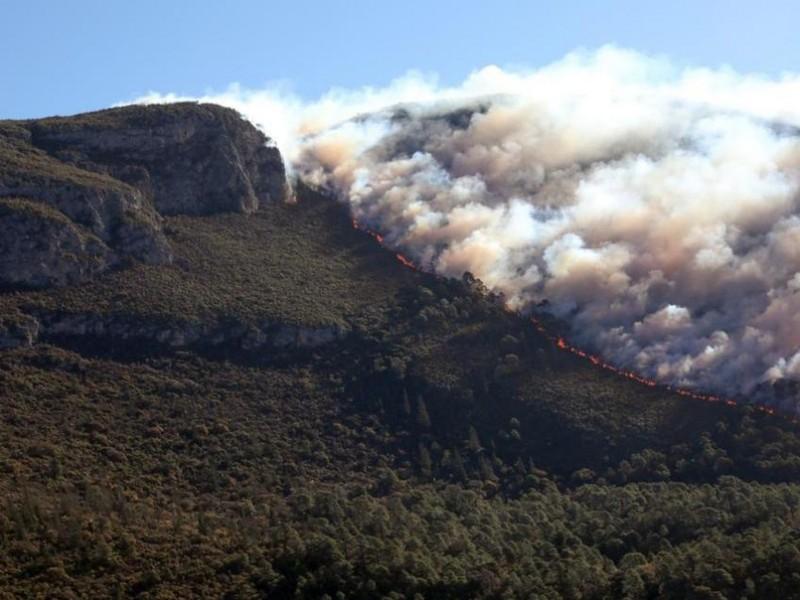 Incendio de Arteaga está controlado al 90%
