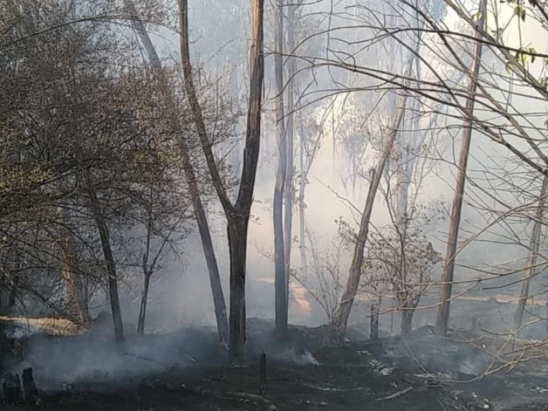 Incendio en el Bosque de Chapultepec