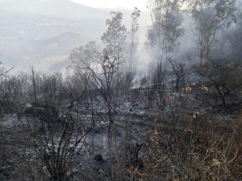 Incendio en el Cerro del Punhuato dejó 35 hectáreas afectadas