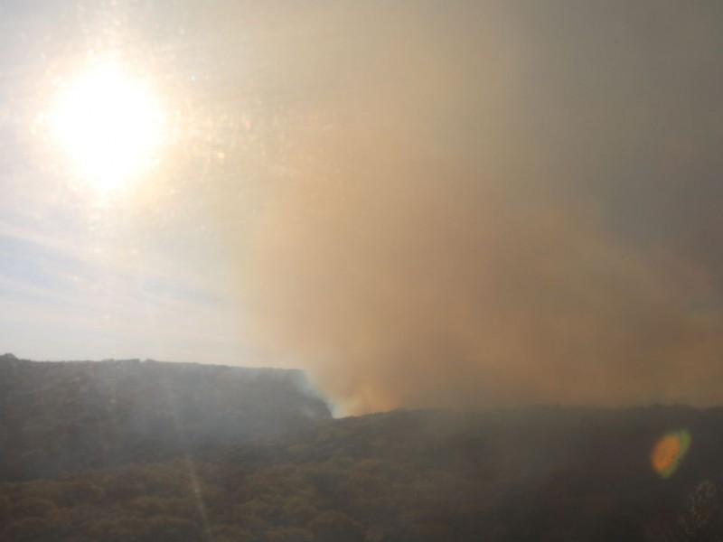 Incendio en La Primavera afecta 25 hectáreas