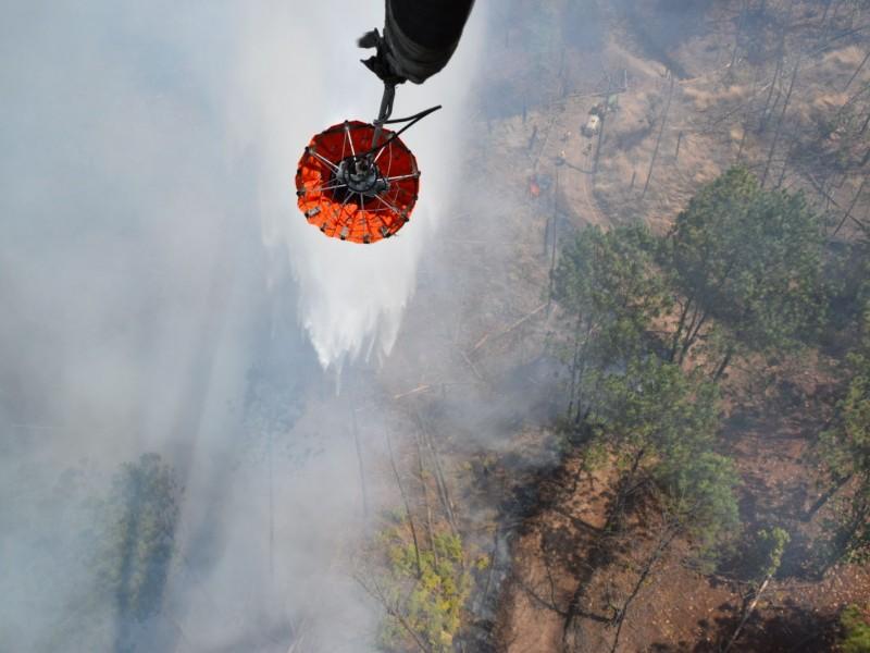 Incendio en Uruapan, controlado y en fase de liquidación: Cofom