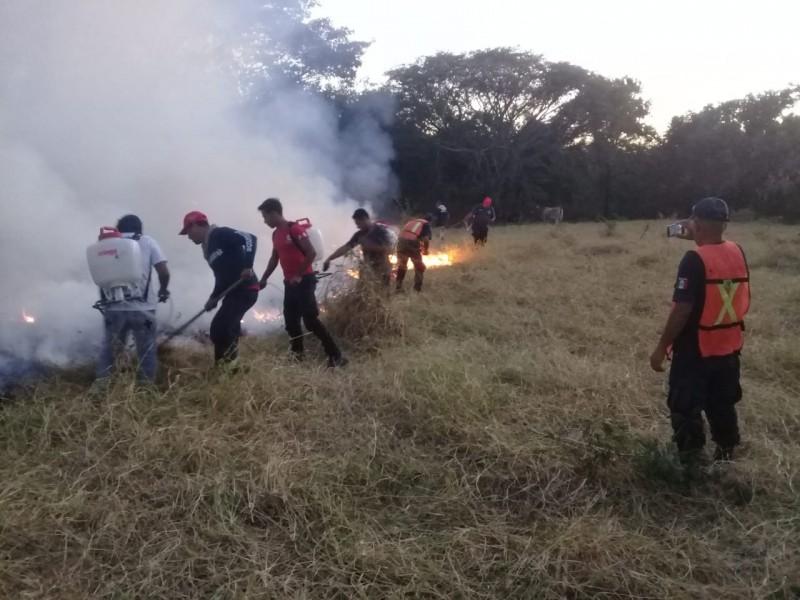 Incendio forestal consume 25 hectáreas de pastizal en Petatlán