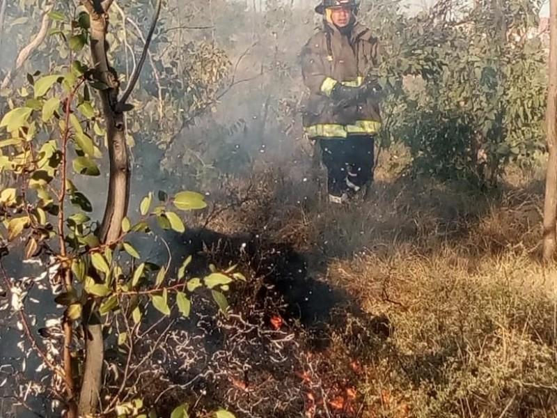 Incendios afectan La Bufa