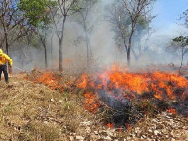 Incendios causan tapón en el Cañón del Sumidero