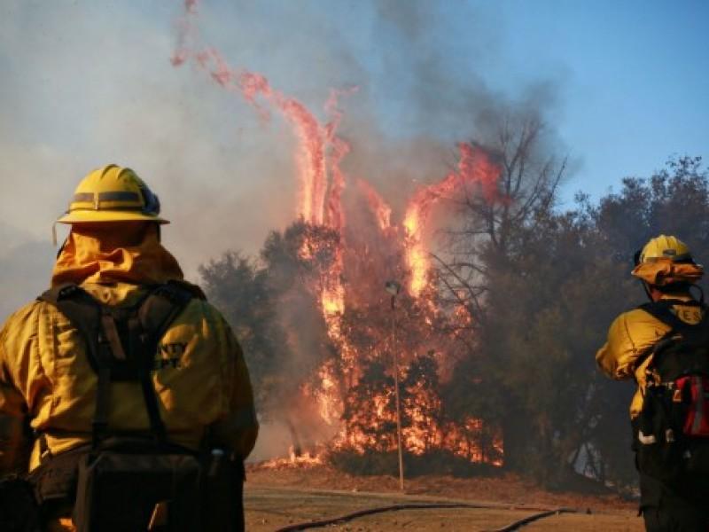 Incendios en California han dejado 84 muertos
