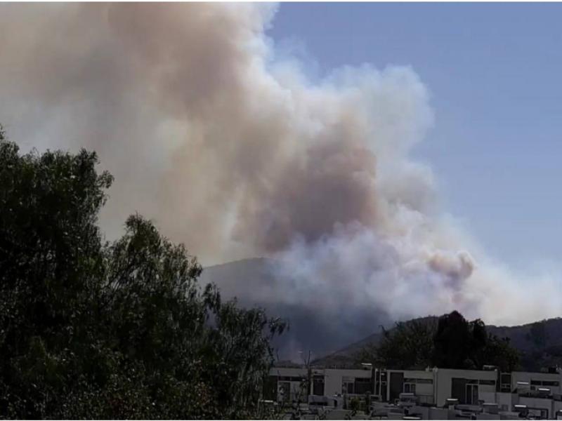Incendios forestales en La Primavera no son por paseantes: SEMADET