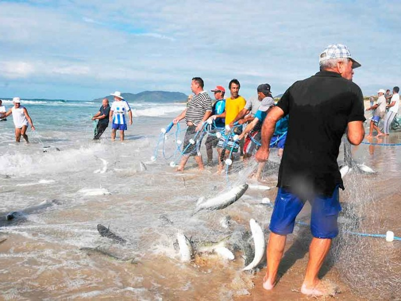 Incentivos al sector pesquero supera expectativas