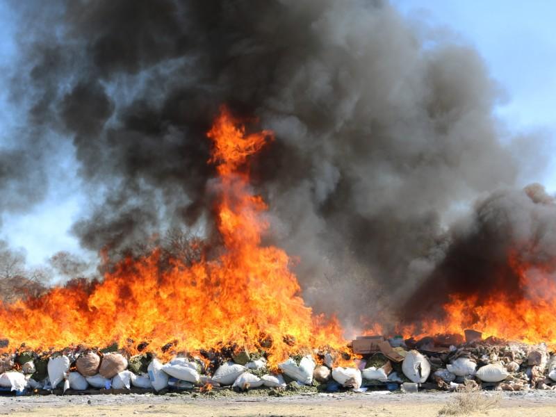 Incineran casi 4 toneladas de narcóticos en Zacatecas