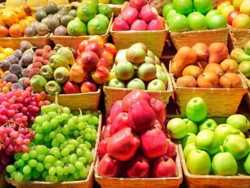 Incorporarán fruta fresca a desayunos escolares