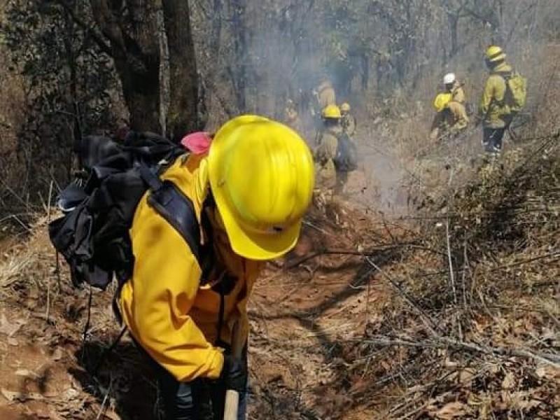 Incrementan incendios forestales en Michoacán más del 200%