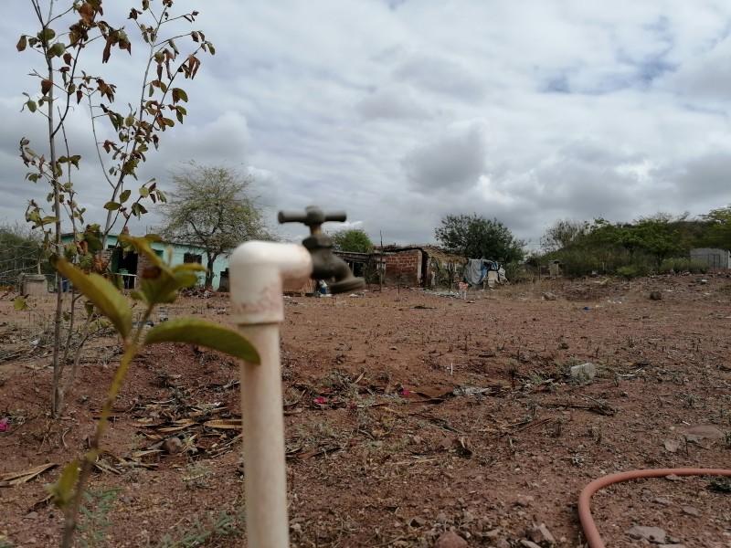 Indígenas se trasladan a Vícam, esperan que AMLO los atienda