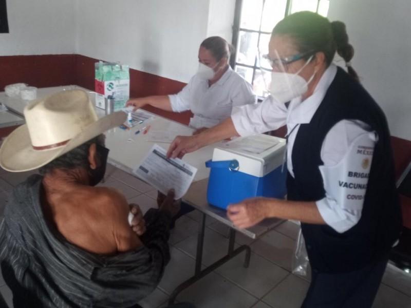 Inicia campaña de vacunación en adultos mayores en Álamos