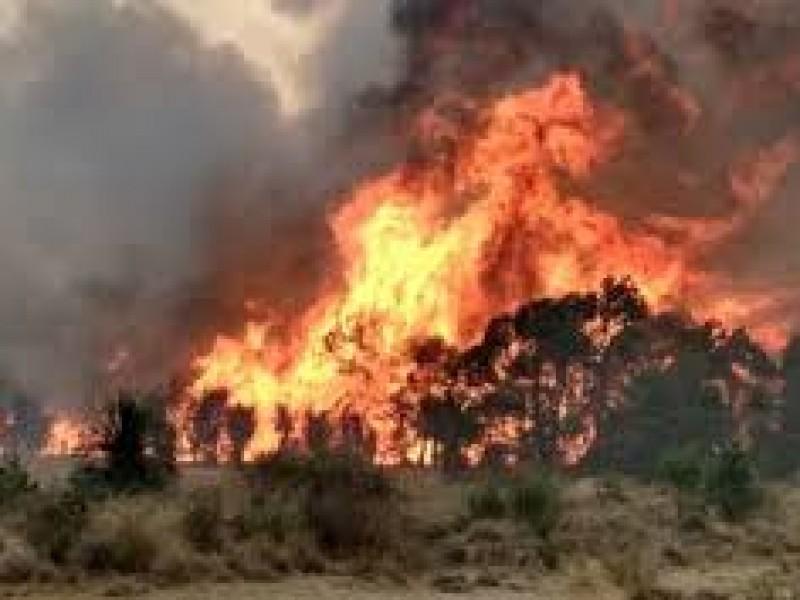 Inicia la temporada de incendios 2021 en Puebla