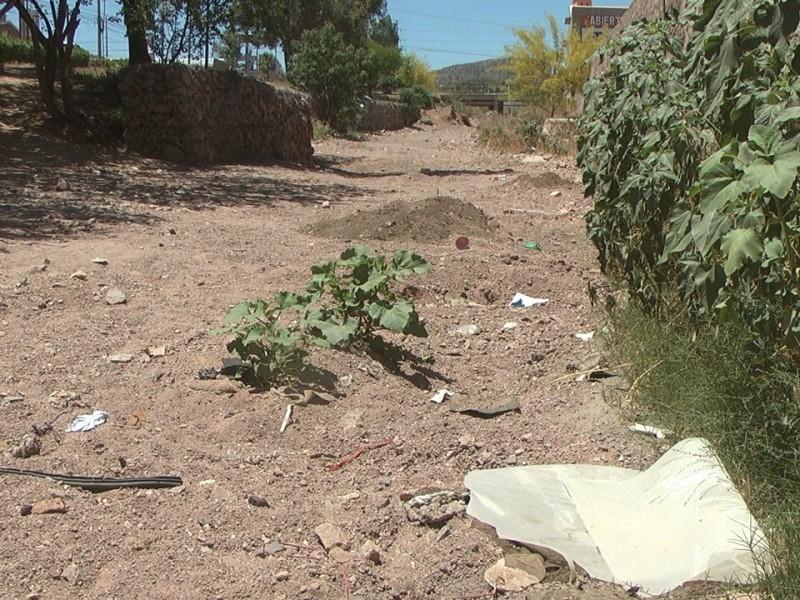 Inicia limpieza de arroyos por próxima temporada de lluvias