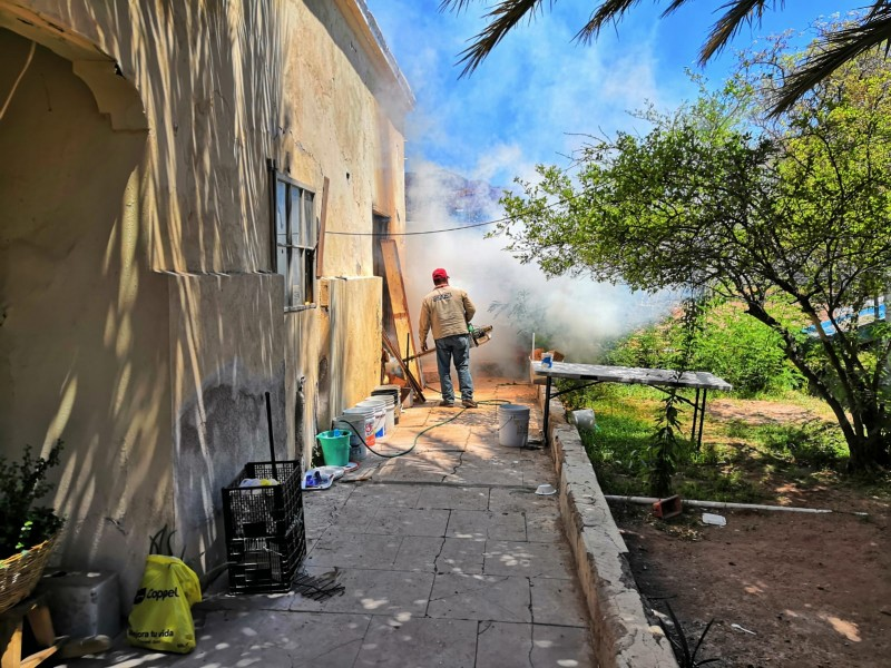 Inician con Control Larvario contra el dengue en Guaymas
