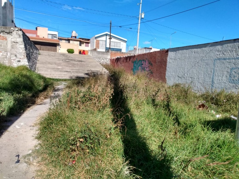 Inseguridad y basura en parque de San José Mayorazgo