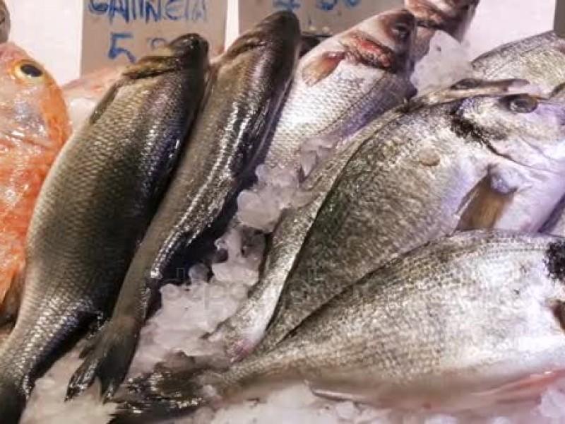 Inspeccionan venta de mariscos
