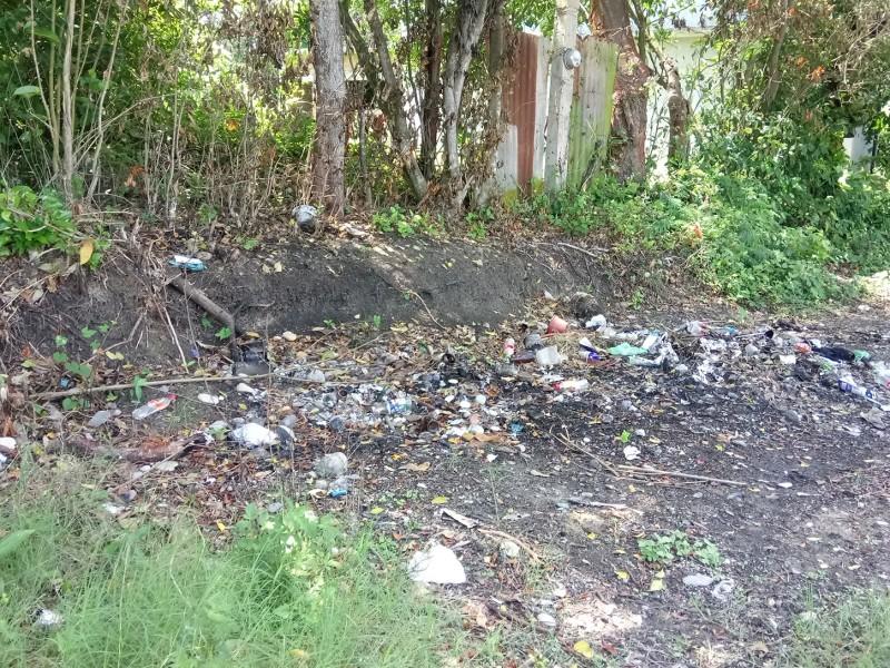 Insuficientes camiones recolectores de basura en Tuxpan
