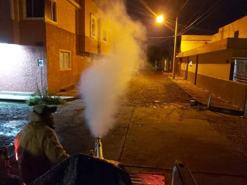 Insuficientes las labores de fumigación en Zamora