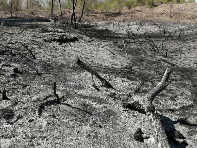 Interpondrán denuncia contra responsables del incendio en el Río Mayo