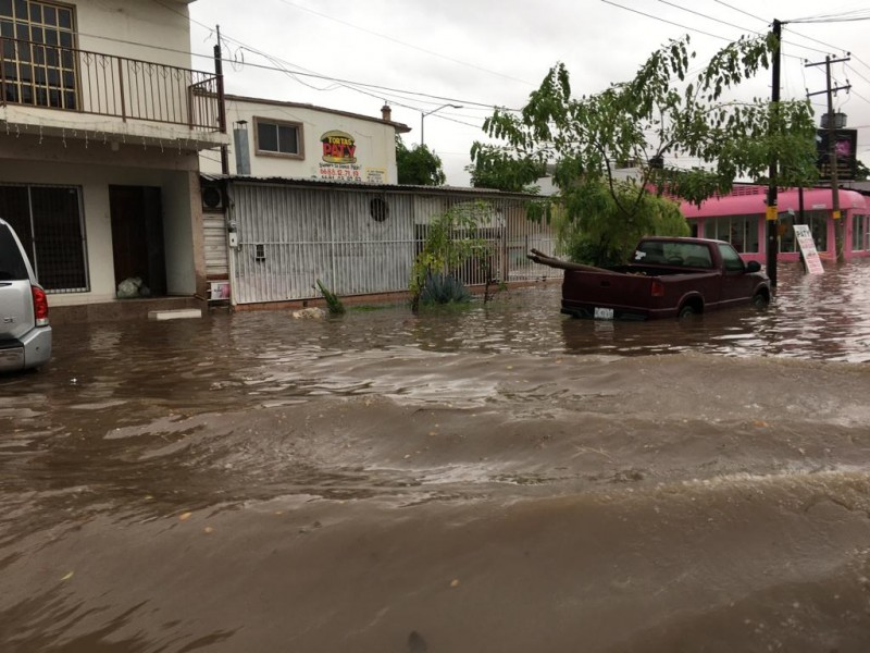 Inundaciones dejan pérdidas económicas
