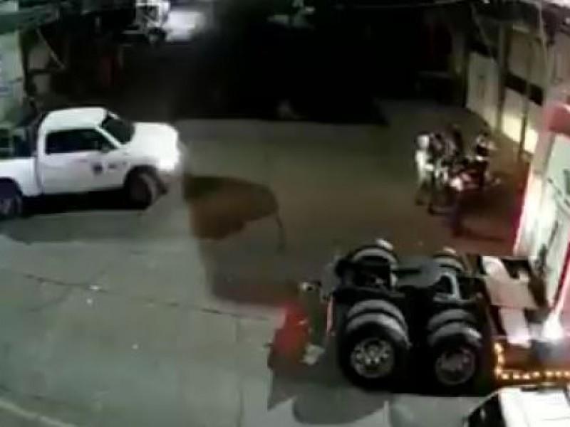 Investiga Fiscalía presunta agresión a trailero en Morelia