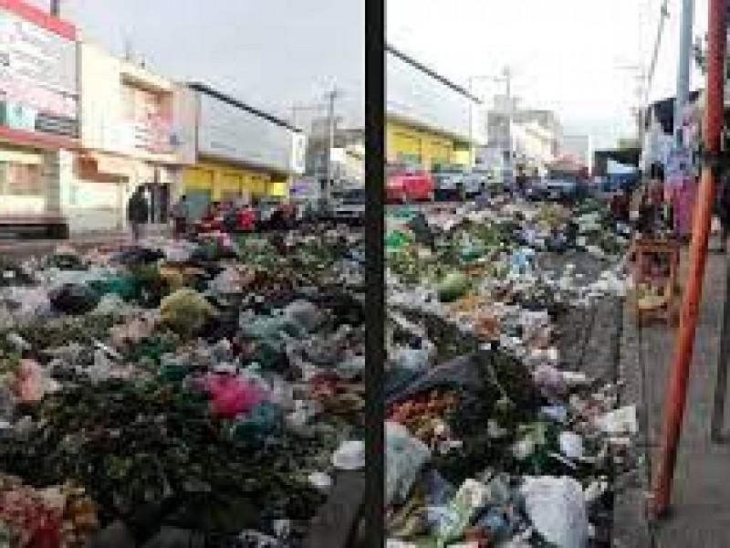 Investigador advierte graves problemas de salud por pandemia y basura