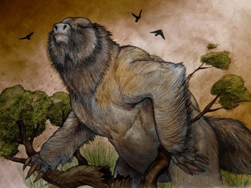 Investigadores descubren restos de perezoso gigante en Argentina