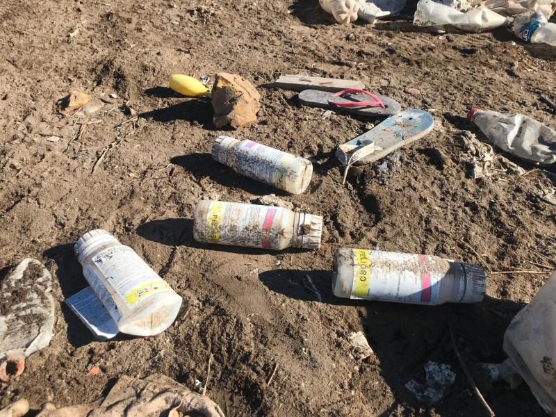 Estudian impacto de manejo inadecuado de agroresiduos plásticos