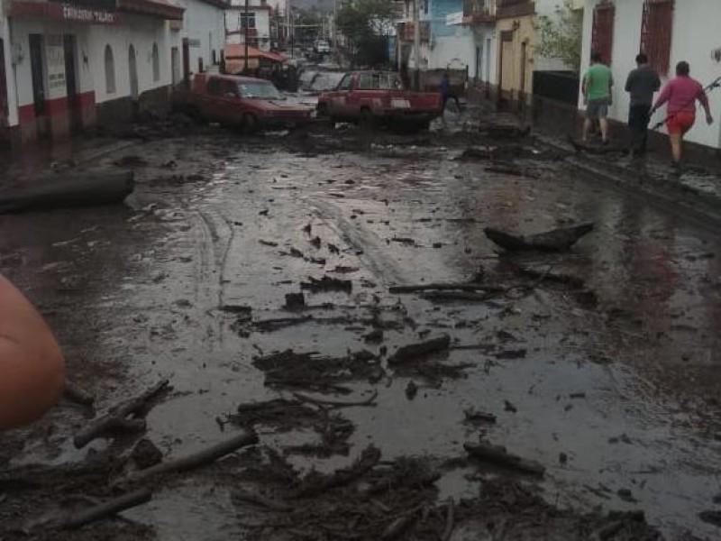 Investigará Estado presunta tala clandestina en San Gabriel