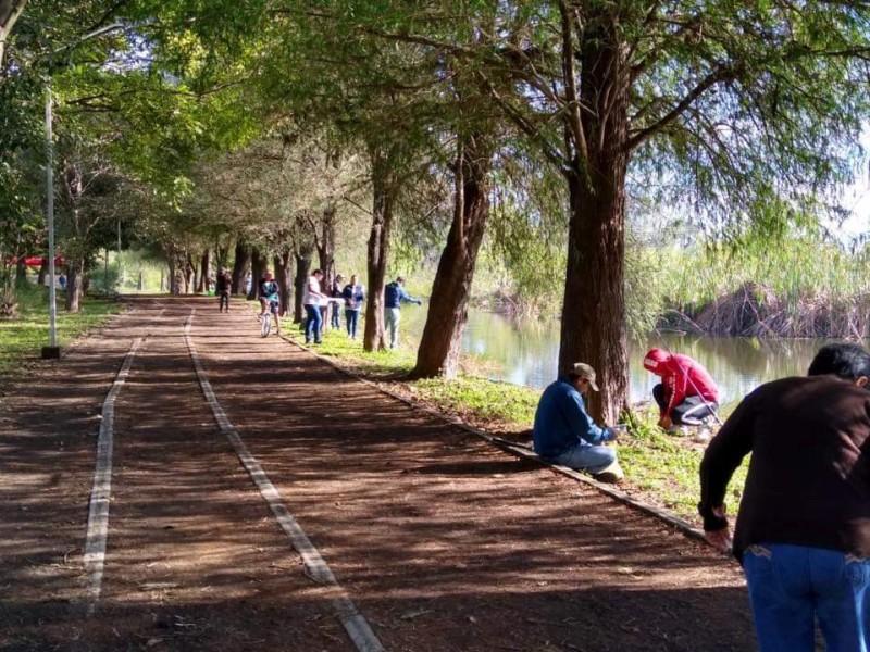 Invita Parque Ecológico a disfrutar de avistamiento de aves migratorias