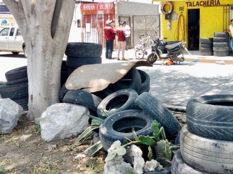 Invitan a denunciar criaderos de mosquitos en Tepic