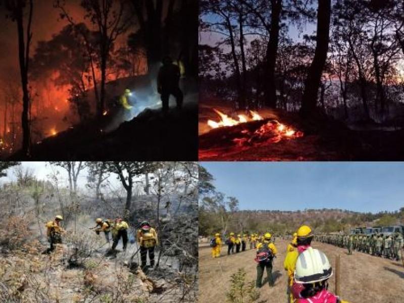 Jalisco entre los 10 estados más afectados por incendios forestales
